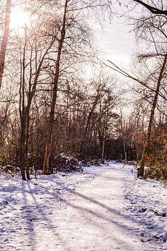 Winter & Sneeuw Oud Verlaat - Landschap nr. 4