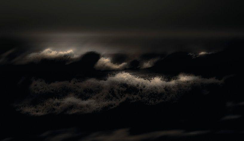 Wild Water van Adrien Hendrickx