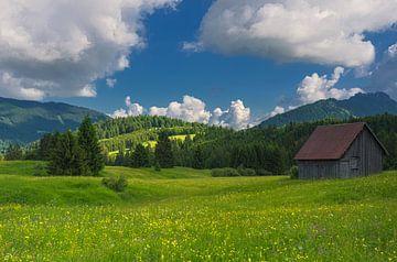 Tirol Austria - Tannheimer Tal sur