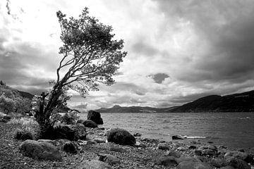 Loch Ness von Annick Cornu