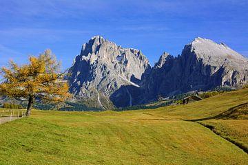 Herfst op Langkofel (Sassolungo) van Gisela Scheffbuch
