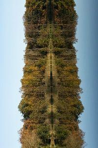Beim Wandern in Oirschot mit dem Herbst
