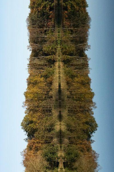Beim Wandern in Oirschot mit dem Herbst von Angela Kiemeneij