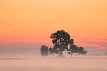 Ein farbenfroher Sonnenaufgang! von Karin de Bruin