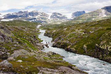 Gletscher-Sicht von Greetje Heemskerk