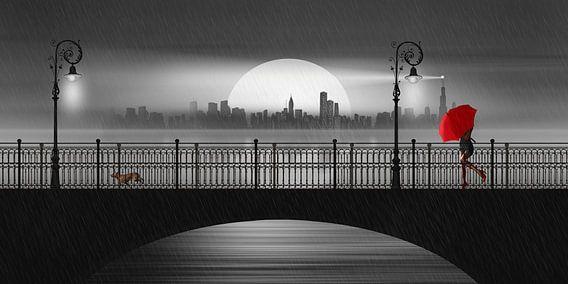 De brug in de zomerregen