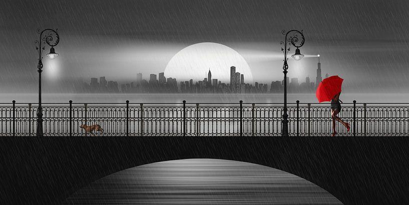 De brug in de zomerregen van Monika Jüngling