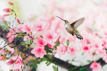 Fliegender Kolibrivogel mit rosa Frühlingsblüte von Diana van Tankeren