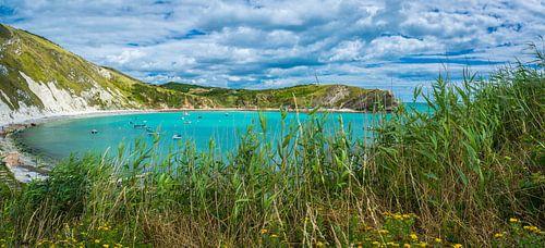 Turquoise baai aan de Jurassic coast, Engeland