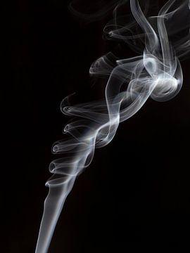 Rook van José Verstegen