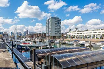 boten in de haven van Rotterdam, Nederland van Marc Goldman