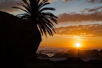 Afrikanischer Sonnenuntergang von Peter Leenen