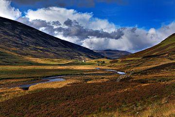 Newbiggings landschap te Schotland von Steven Reynders