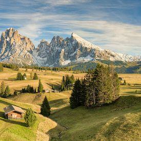 Journée dorée d'automne sur l'Alpe di Siusi sur Michael Valjak