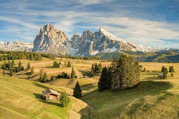 Journée dorée d'automne sur l'Alpe di Siusi