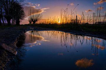 Regenplas reflectie van Joran Quinten
