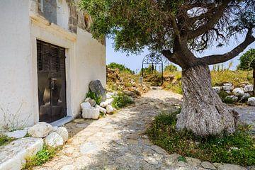 Kapel met oude olijfboom van Ursula Reins