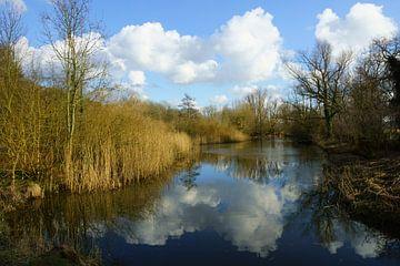 Hollandse lucht bij de Kralingse Plas  van Michel van Kooten