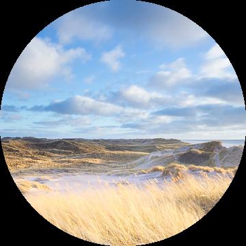 Duinlandschap - Jutland, Denemarken van Bas Meelker