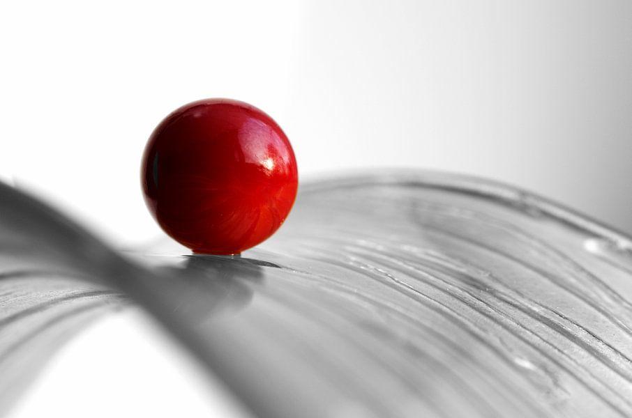 Roter Kuss  in Schwarz Weiss Fotografie von Tanja Riedel