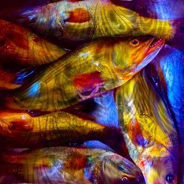 Vissen van Raina Versluis
