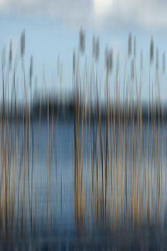 Mijmeren aan de waterkant van Margo Schoote