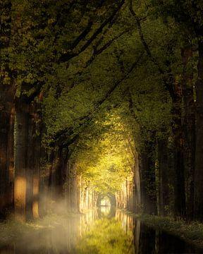 Still Life van Kees van Dongen