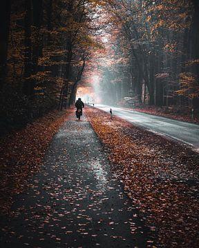 Road von Arnold Maisner