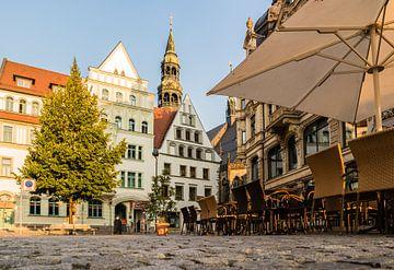 Oude binnenstad van Zwickau in Saksen van Animaflora PicsStock