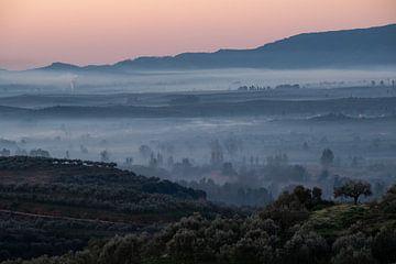 Nebel im Tal von Lianne van Dijk