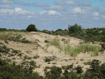 Duinen in Katwijk van Brigitte Koster