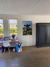 Klantfoto: Koeien in de wei van Sjoerd van der Wal, op canvas