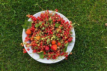 Lokaal, gezond en duurzaam fruit uit de tuin van Hilda Weges