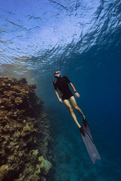 Freediving langs het rif van Eric van Riet Paap