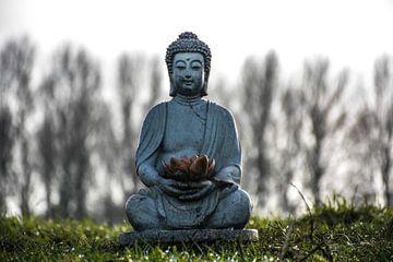 boeddha  von Naomi bakker
