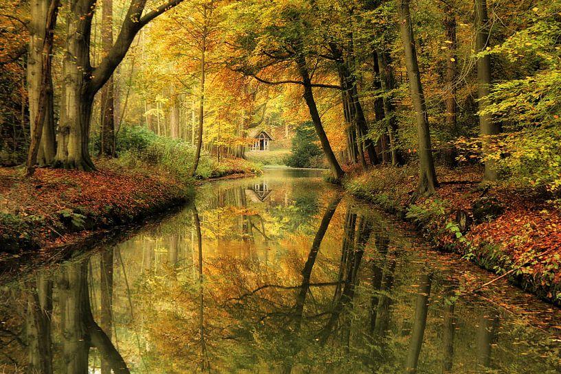 Sprookjesachtig herfst bos. van Bob Bleeker