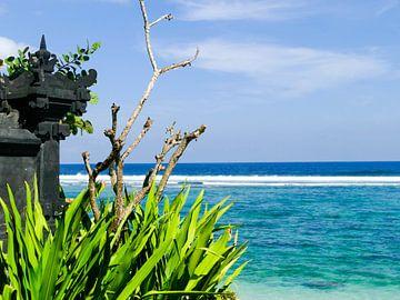 Het paradijs op Bali van Petra Brouwer