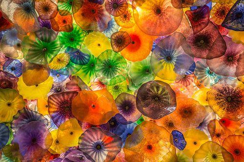 Jellyfish lampen van Edwin Mooijaart