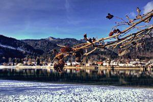 Fokus am Walchensee
