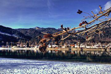 Focus op de Walchensee van Roith Fotografie