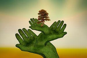 The protective hands (3) van