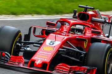 Sebastian Vettel sur