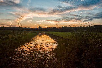 Zonderwater van Maik Jansen