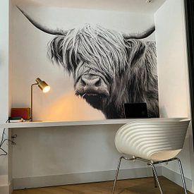 Kundenfoto: Hochland Rind Highland Lustig von Felix Brönnimann, auf fototapete