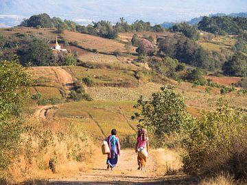 Myanmar - Kalaw - Terug naar huis wandelen van Rik Pijnenburg
