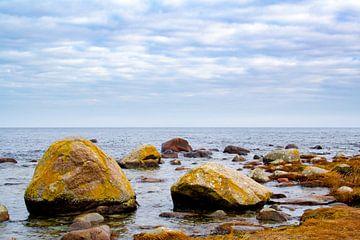 Steine im Wasser von Steffen Schöne