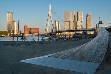 De Erasmusbrug in Rotterdam bij zonsondergang van Anges van der Logt