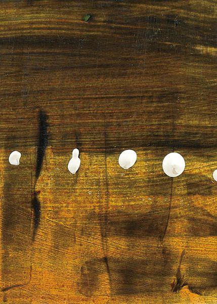 Tolkens of Today X, Piper Rhue van Wild Apple