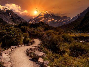 Het pad naar de bergen - Mount Cook van Max Steinwald
