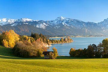 Forggensee und Allgäuer Alpen im Herbst, Allgäu, Bayern, Deutschland von Markus Lange